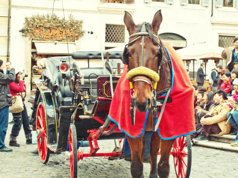 Download Carriage and horse editorial image. Image of travel, tourists - 23210800