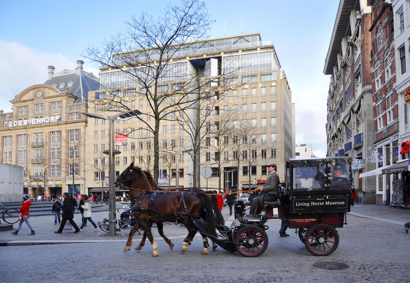 Download A Carriage Horse On Amsterdam Dam Square Editorial Photo - Image: 23156576