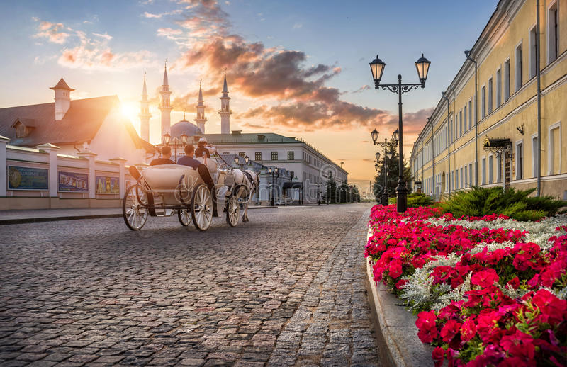 The carriage and horse rides on the pavement stock images