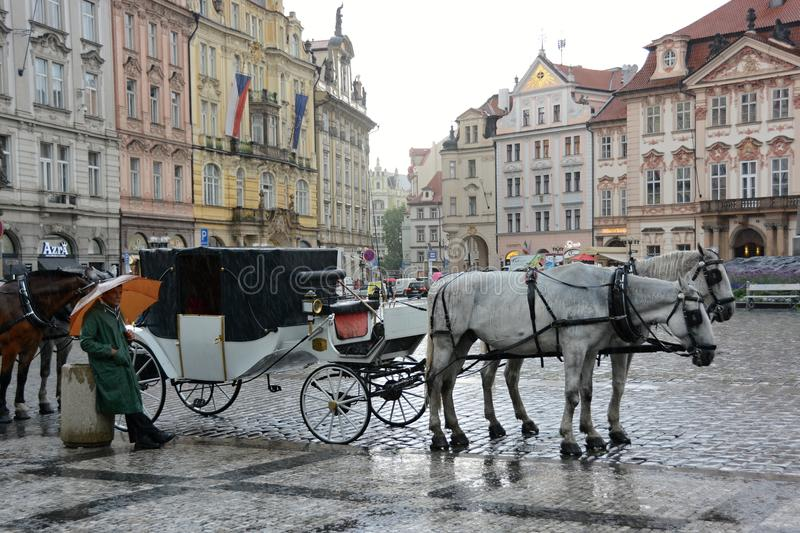 Carriage with horses in Old Town Square in Prague stock image