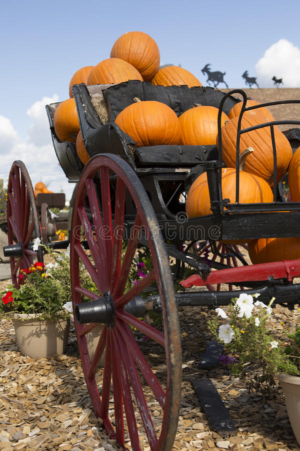 Download Carriage Loaded With Pumpkins Stock Photo - Image: 35355678