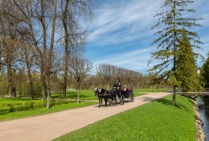 Carriage in the regular garden in front of Catherine Palace in the town of Pushkin, south of St. Petersburg. Russia stock photos
