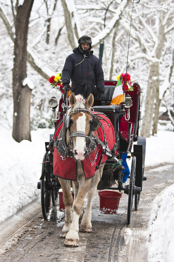 Carriage Ride in winter stock photo