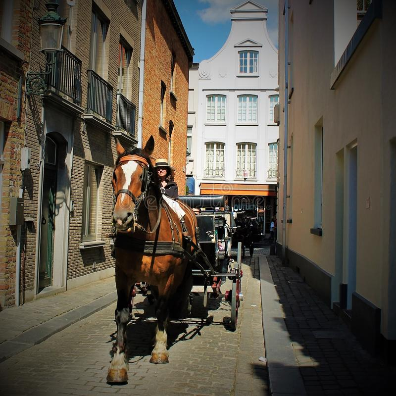 Free Carriage With A Horse In Brugge Stock Image - 108796551