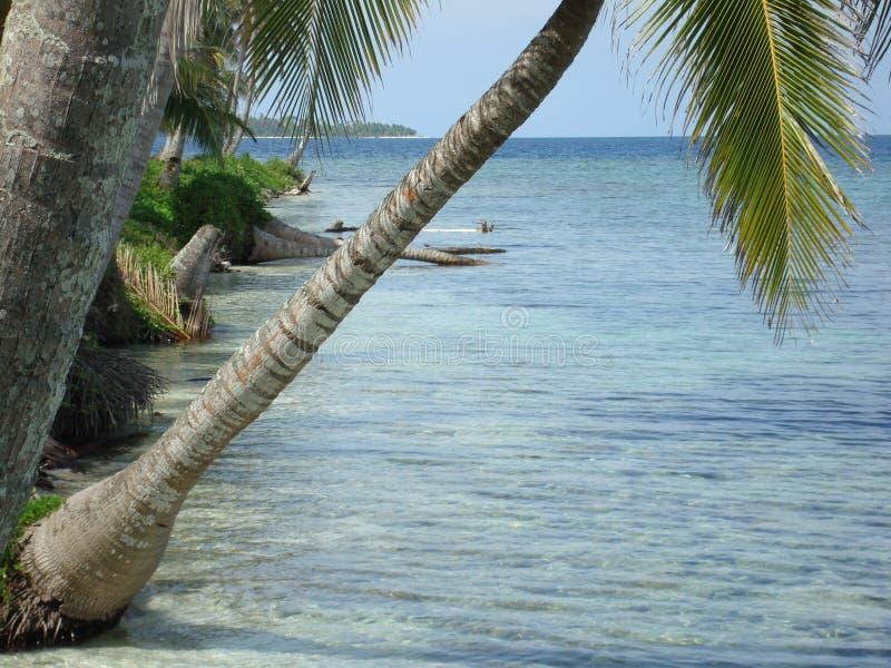 Carribean beach stock images