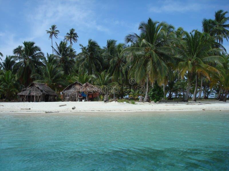 Carribean beach royalty free stock photo