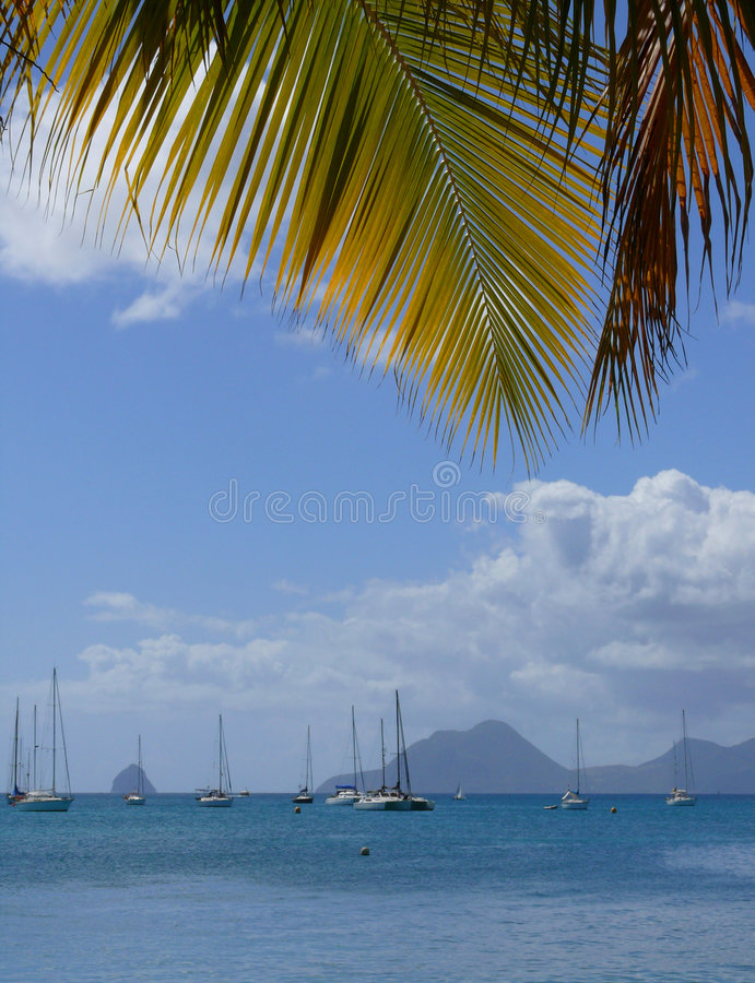 Carribean sea. With palm leaf and boats royalty free stock photos