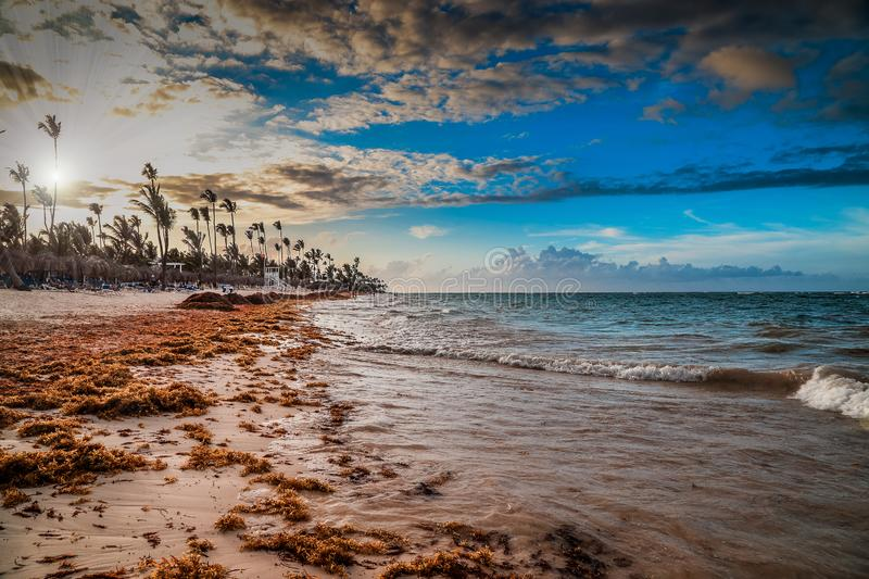 Carribean vacation, beautiful sunset over tropical beach in Punta Cana stock photography