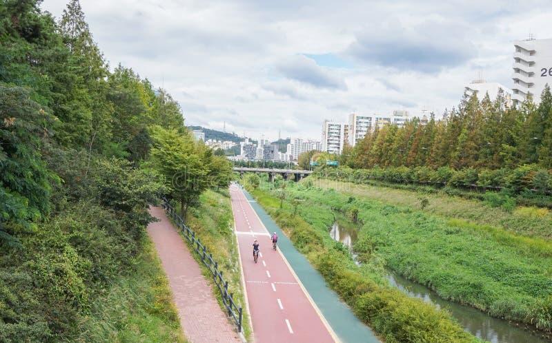 Carril de bicicleta en parque público fotografía de archivo