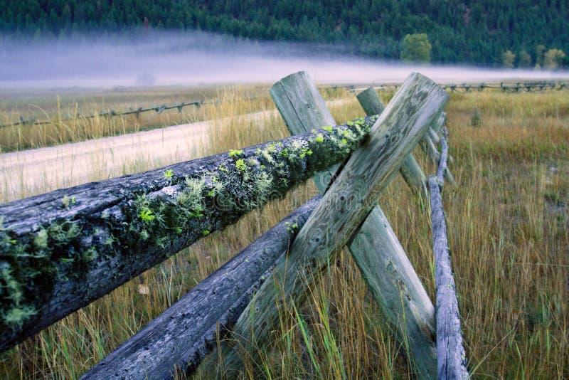 Carril de cerca de madera de la cubierta del musgo fotografía de archivo