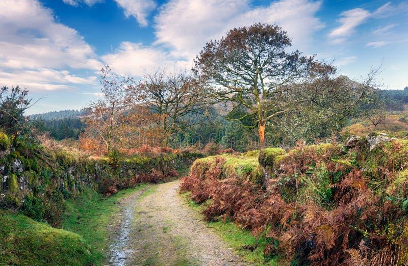 Carril de Dartmoor fotos de archivo