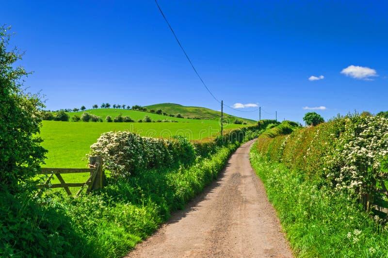 Carril del país, camino rural imagenes de archivo