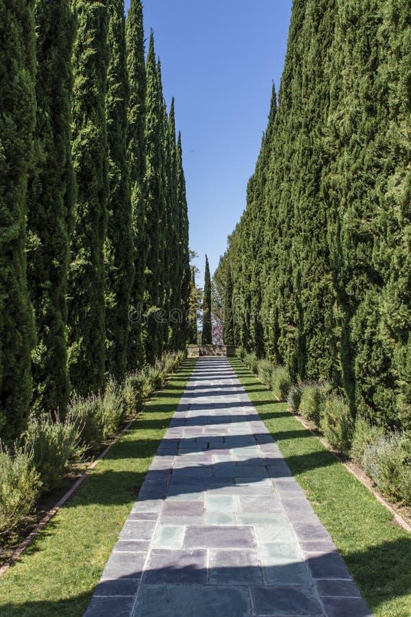 Carril en el parque de la mansión de Greystone en Beverly Hills, Los Ángeles, California fotografía de archivo libre de regalías
