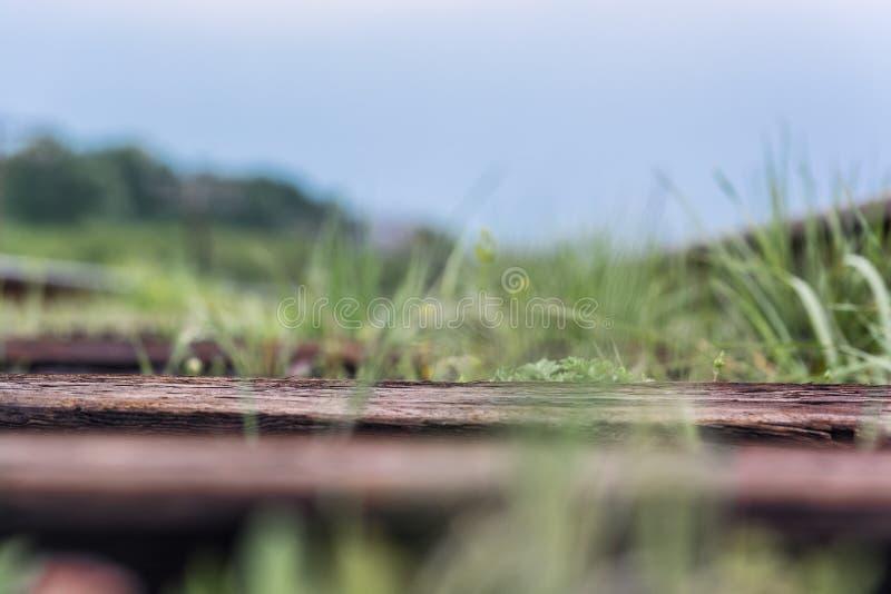 carril Naturaleza en Tekeli Primavera imagen de archivo