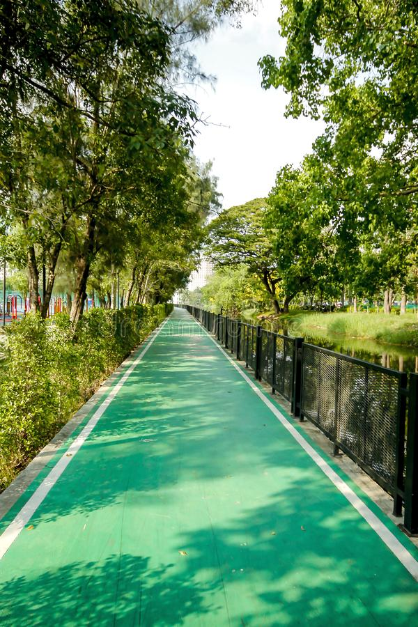 Carril para biking en el parque imagen de archivo