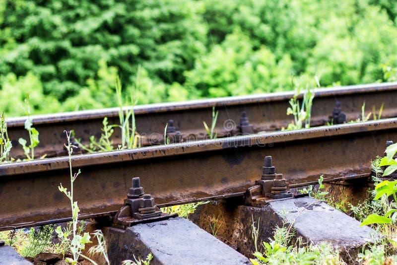 Carriles ferroviarios con el primer del montaje del perno contra hierba verde adentro imagen de archivo