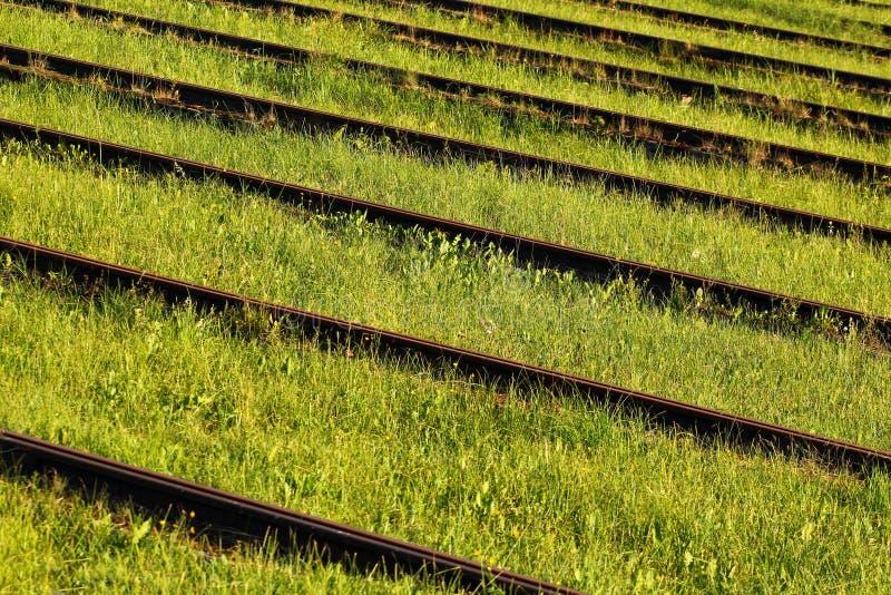 Carriles oxidados viejos del hierro en una hierba verde imagen de archivo