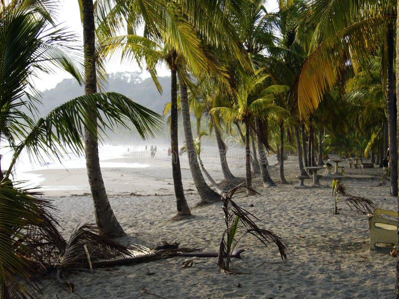 Carrillo-Strand Costa Rica stockfotografie