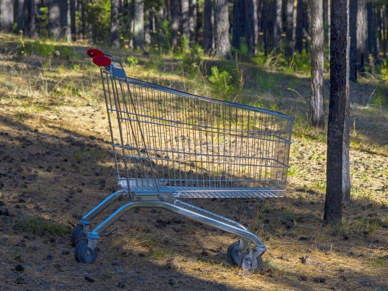 Carrinho de compras de aço vazio do supermercado com os punhos do vermelho em Forest Clearing, profundo em uma madeira Vida minim imagens de stock