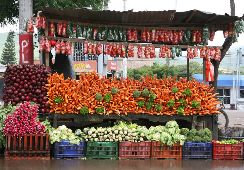 Carrinho vegetal colorido imagem de stock