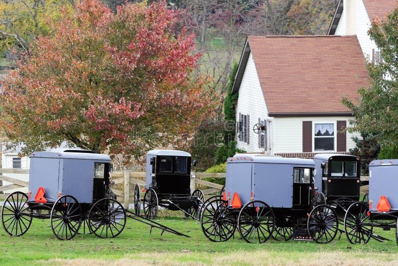 Carrinhos de Amish estacionados na entrada de automóveis imagens de stock