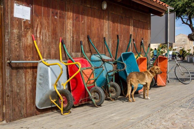 Carriole di Colorfull e un cane fotografie stock