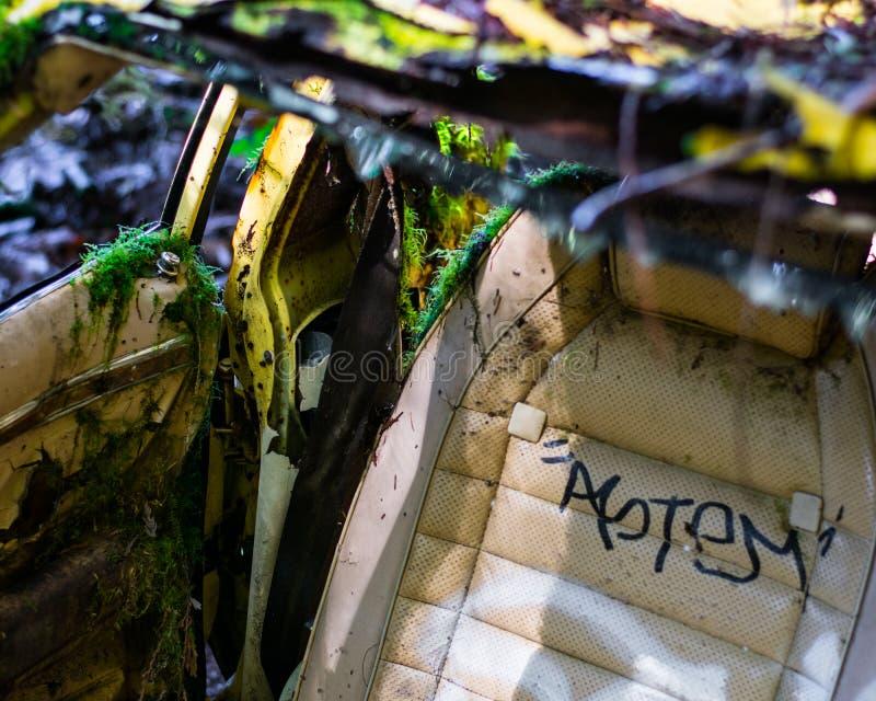 Carro abandonado em Forest Overgrowth foto de stock