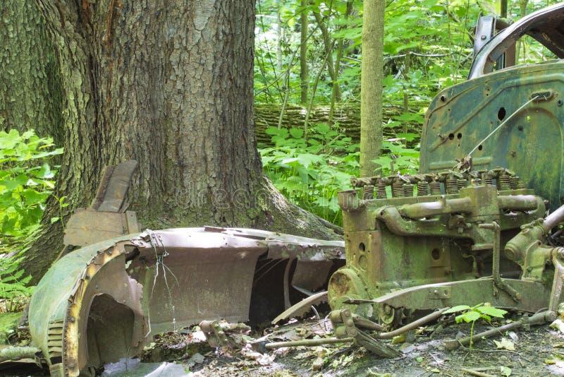 Carro abandonado velho na floresta imagem de stock royalty free