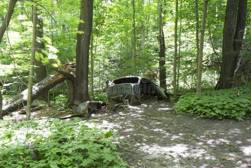 Carro abandonado velho na floresta fotos de stock