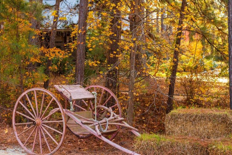 Carro antigo do cavalo nas madeiras foto de stock