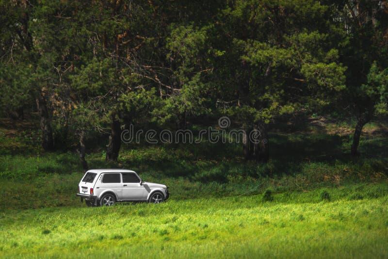 Carro branco SUV entre montes verdes foto de stock royalty free
