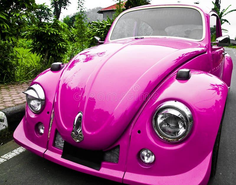 Carro cor-de-rosa - besouro fotos de stock royalty free