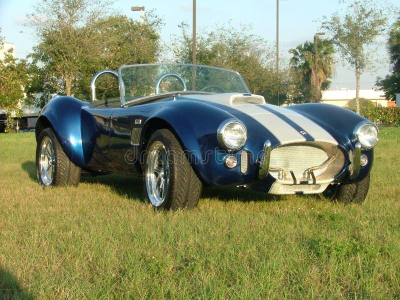 Carro da cobra - clássico foto de stock royalty free