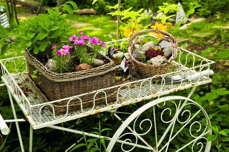 Carro da flor no jardim fotografia de stock