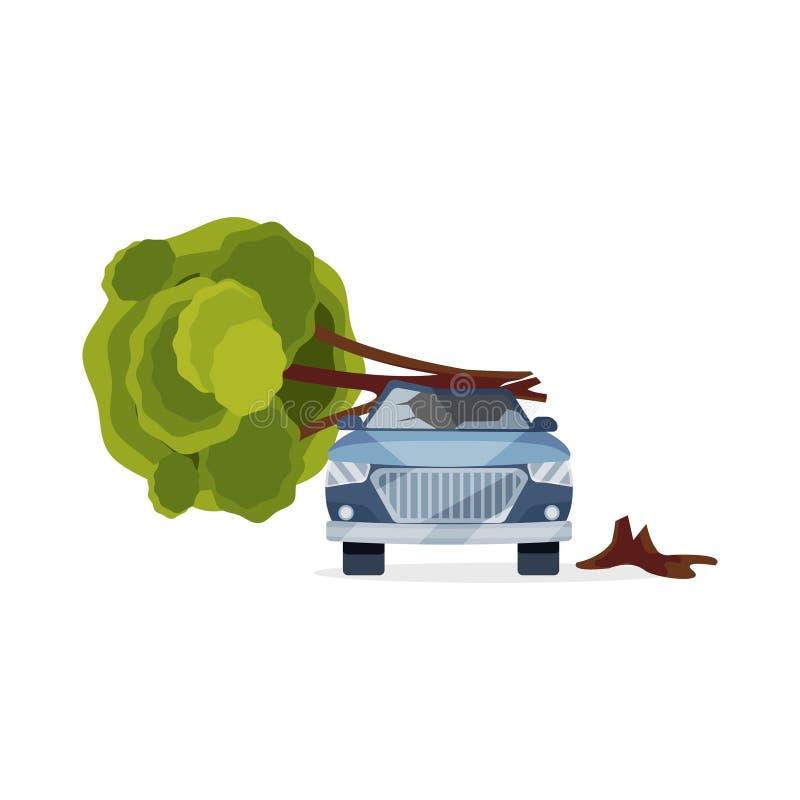Carro danificado pela árvore caída Automóvel azul com para-brisa quebrado Elemento liso do vetor para anunciar a bandeira de ilustração stock