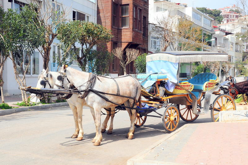 Carro de cavalo imagens de stock royalty free