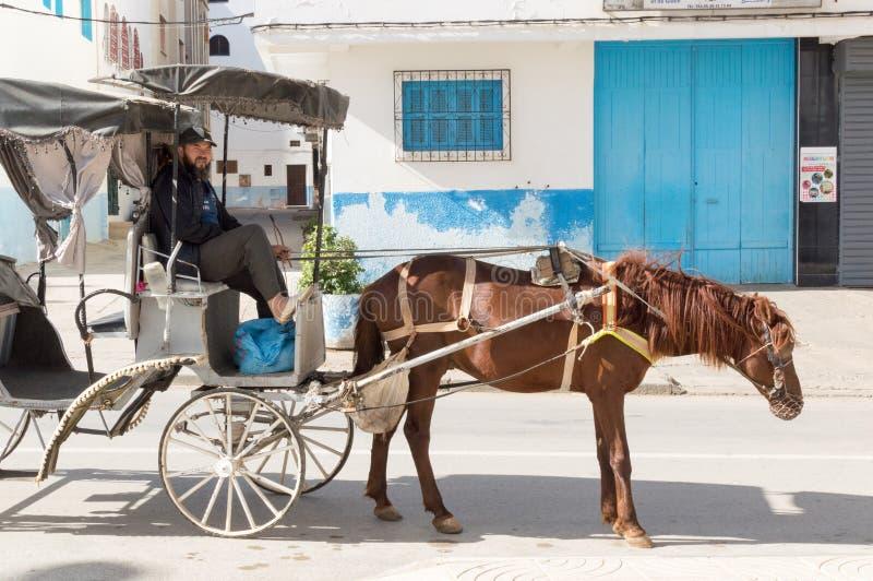 Carro de cavalo levado pelo vendedor ambulante marroquino fotografia de stock