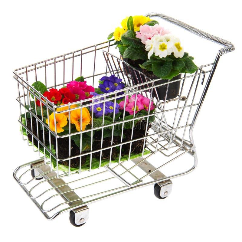 Carro de compra com flores imagem de stock royalty free
