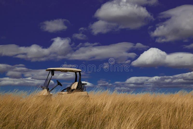 Carro de golf en la hierba alta fotografía de archivo libre de regalías
