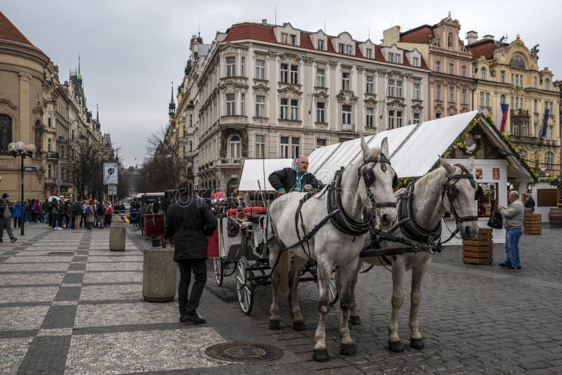 Carro de los caballos en Praga imagen de archivo libre de regalías