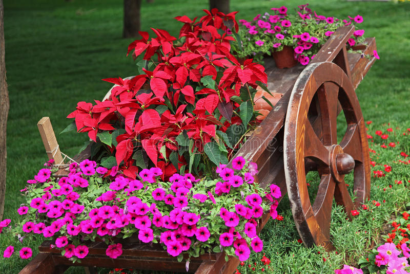 Carro de madera por completo de flores coloridas imagen de archivo