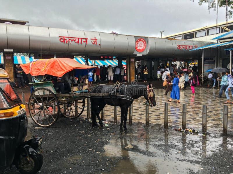 Carro de Tongahorse en el ferrocarril de Kalyan en el maharashtra la INDIA de la monzón fotografía de archivo