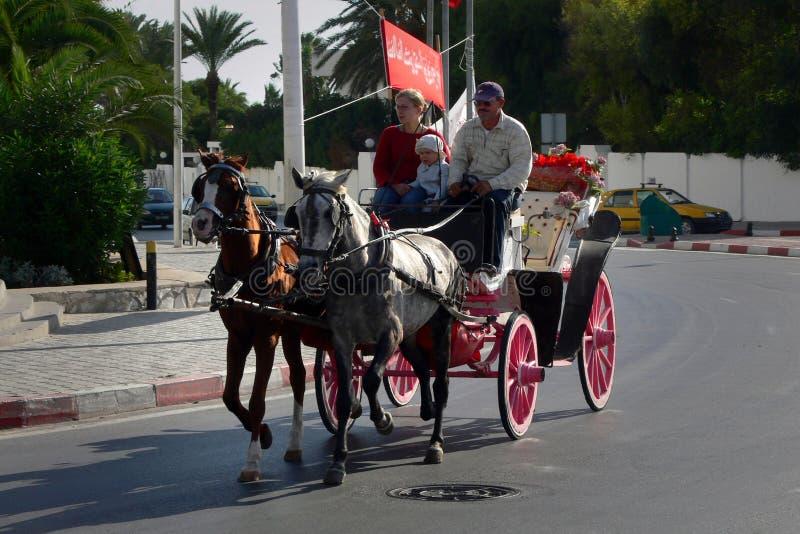Carro del caballo fotos de archivo libres de regalías