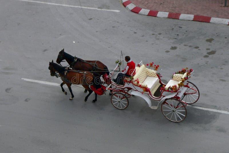 Carro del caballo imágenes de archivo libres de regalías