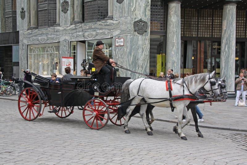 Carro del caballo con los turistas en Heldenplatz, Viena fotos de archivo libres de regalías