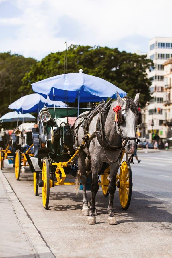 Carro del caballo parqueado en Andalucía, España imagen de archivo