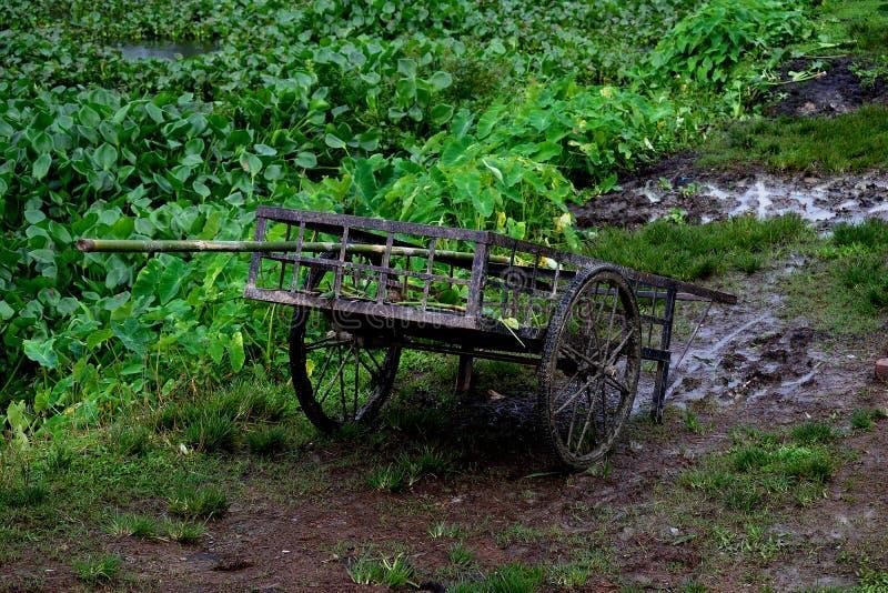 Carro del carro dejado en Muddy Field fotografía de archivo libre de regalías