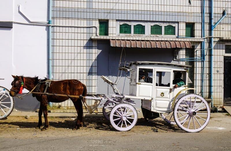 Carro di cavalli per strada a Pyin Oo Lwin, Myanmar fotografia stock libera da diritti