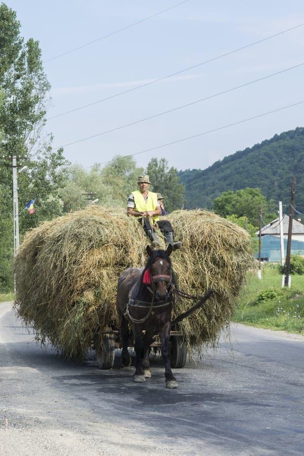 Carro do feno em Romênia foto de stock royalty free