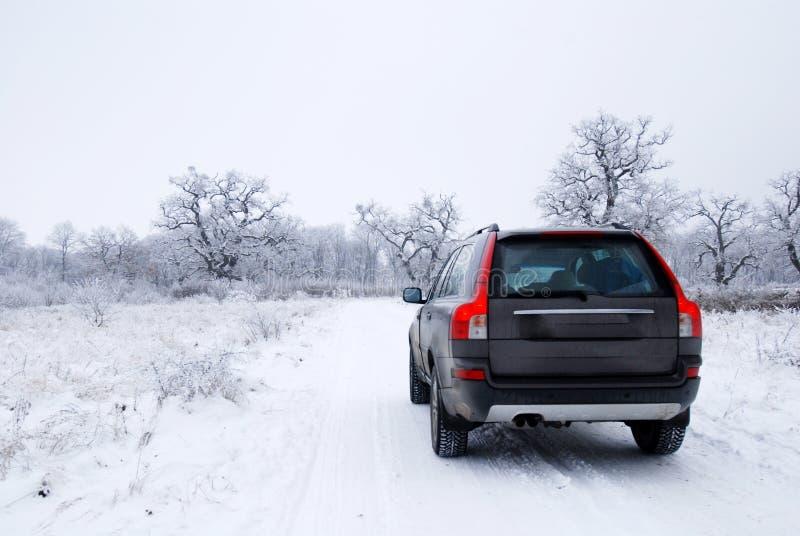 Carro do inverno fotos de stock